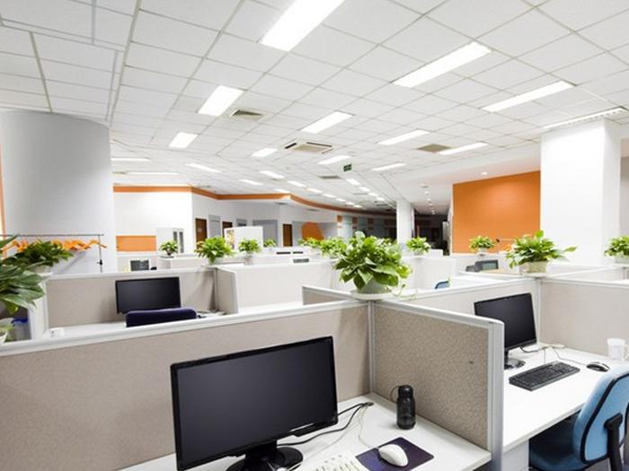 luz-en-la-oficina